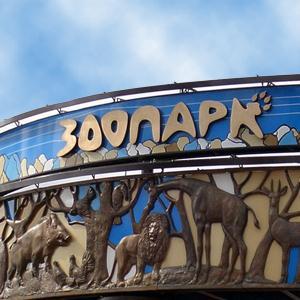 Зоопарки Мичуринска